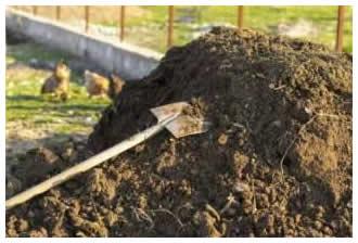 畑の牛堆肥02