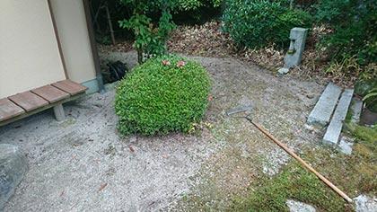石灰石の庭-3